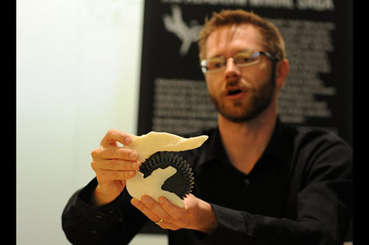 Leif Tapanila, from Idaho State University, shows a model of the buzz-tooth shark fossil Helicoprion at the UAA ConocoPhillips Integrated Science building in Anchorage, AK on Wednesday, May 13, 2015. Bob Hallinen / ADN In 1986, Ri