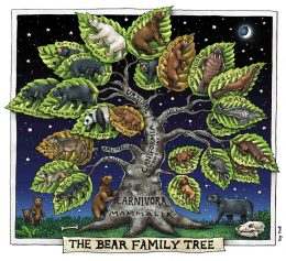 BEAR FAMILY TREE ART POSTER