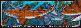 DEVONIAN SHARKS FROM SUEMEZ ISLAND
