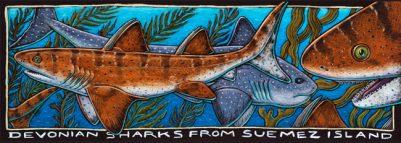 DEVONIAN SHARKS FROM SUEMEZ ISLAND