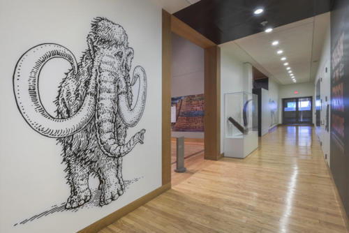Woolly Mammoth graphic