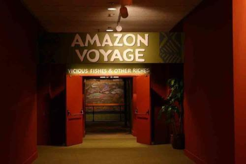 The Amazon Voyage exhibit at the Smithsonian's International hall.