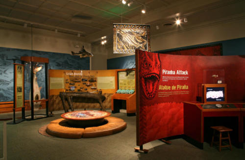 The Amazon Voyage exhibit in Miami