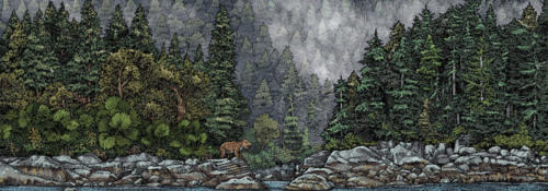 Ancient Tongass