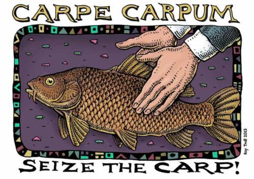 Carpe Carpum