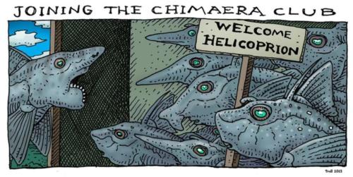 Chimaera Club