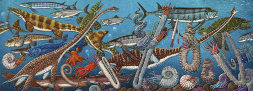 North Pacific Cretaceous  Marine Life