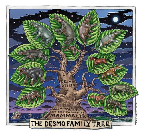 Desmo Family Tree