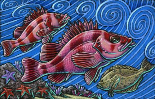Flag Rockfish and California Halibut