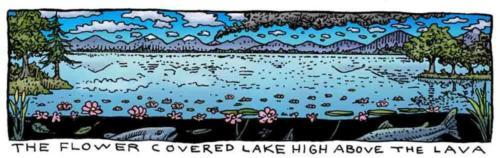 Flower Covered Lake