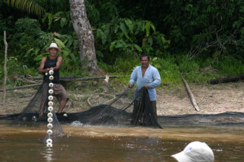 Commercial fishing operation… pulling a seine net by hand.