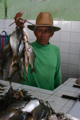 A handsome old fishmonger with Jaraqui for sale, Coari.