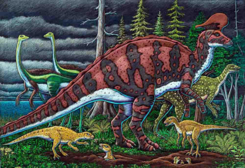 Lambeosaur