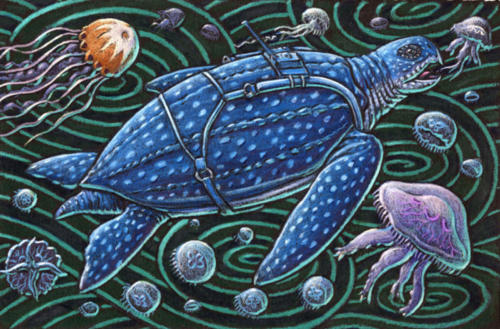 Leatherback Turtle with tracking device