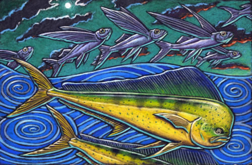 Mahi Mahi and Flying Fish