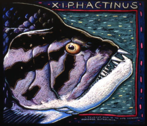 Xiphactinus, the Meanest Pescado