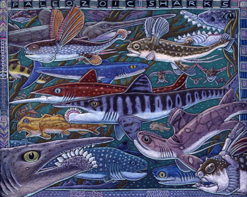 Paleozoic Sharks