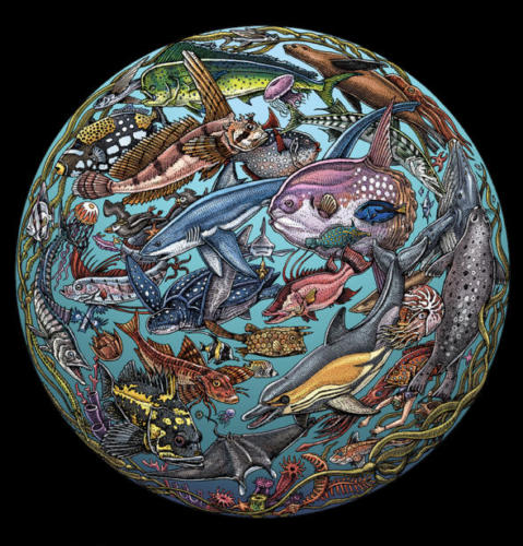 Planet Ocean graphic sphere