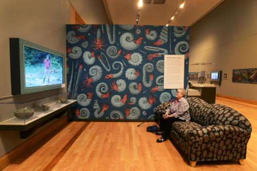"The 'paleo lounge"" with TV set, ammonite wallpaper, trilobite couch and fossils"