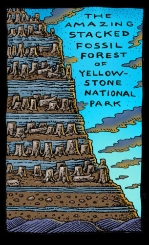Stacked Fossil Forests of Yellowstone