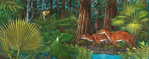 Tiny Horses of the Eocene Tongass