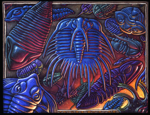 Trilos by Fire (trilobites)
