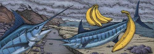 Two Marlin and One Banana chapter heading