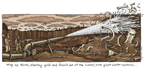 Loess is More (fossils)