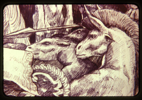 Four Horsemen Detail