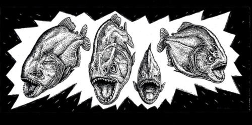 Piranha Gang