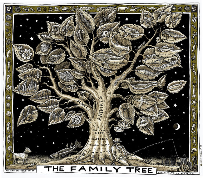 Which Family Tree Is Ideal For You?