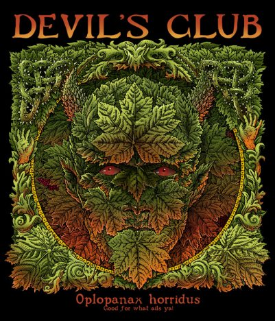 DEVIL'S CLUB