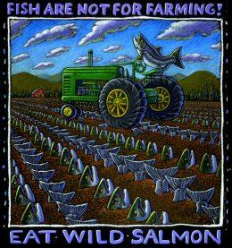EAT WILD SALMON