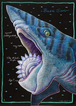 HELICOPRION HEAD #1