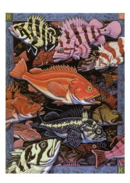 ROCKFISH CARD PACK
